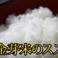 【金芽米とは】白米の代わりは金芽米がおすすめ!健康的?美味しいの?メリットは?